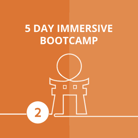 5 day immersive data science training
